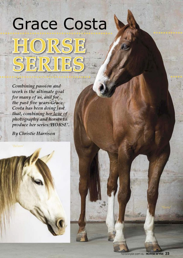 The Horsewyse_Page_1