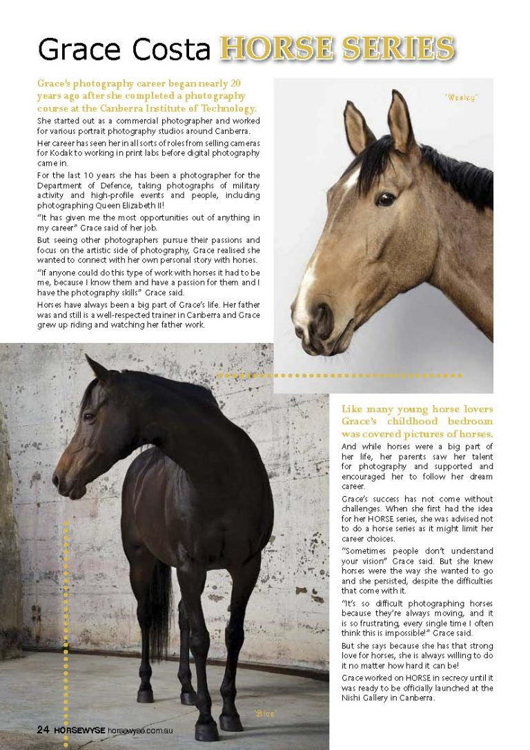 The Horsewyse_Page_2