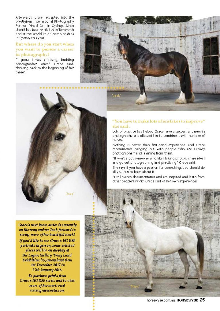 The Horsewyse_Page_3